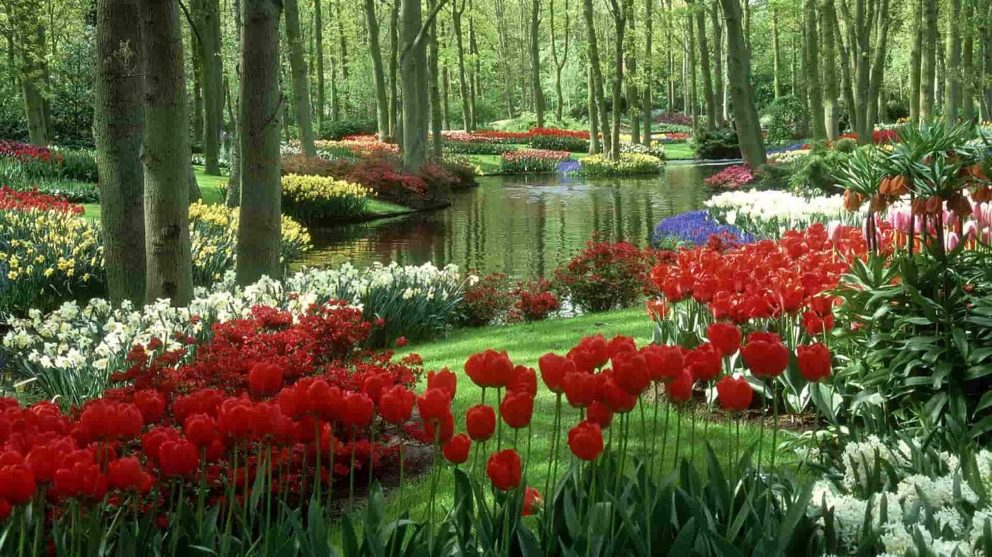 Vackra trädgårdar att drömma sig bort i